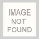 BRUSH-DTY-792/GREEN NEPTUNE / Solid Brushed DTY,