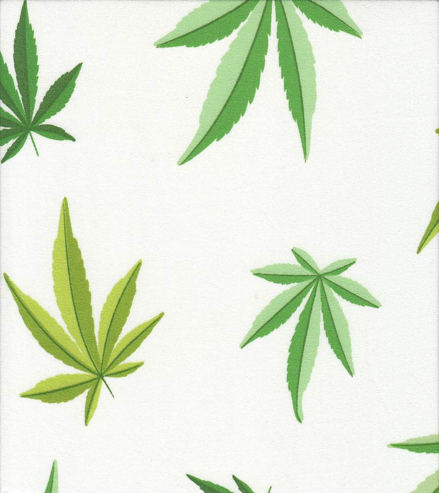 B219658-792BR-I/02WHITE/GREEN / Brushed DTY W/Cannabis Conversational Design,